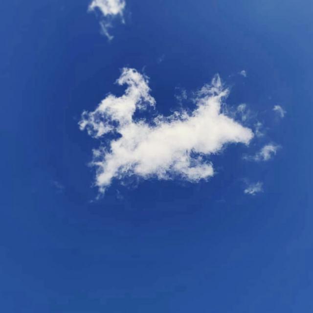 チョコちゃんの雲.jpgのサムネール画像
